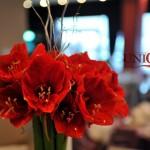 detaliu aranjament floral amaryllis Unique Moments Iasi