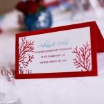 Plic bani rosu turquoise nunta de proba Motel Bucium 2012